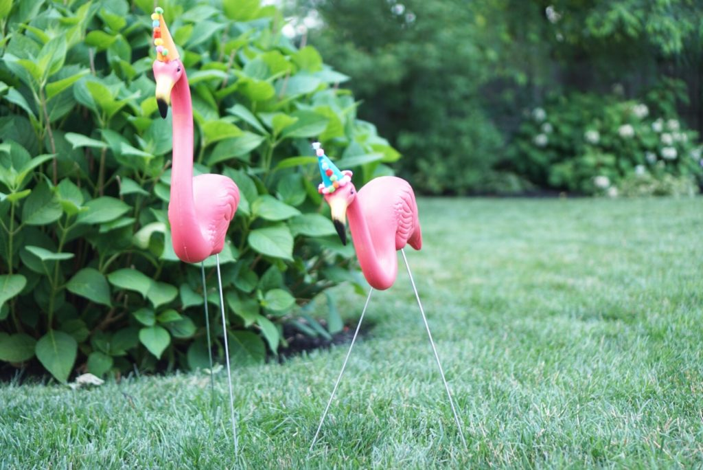 flamingos in party hats party animal birthday decoration