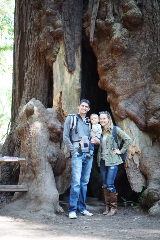Muir Woods San Francisco Sausalito With Baby Toddler Redwood Forest