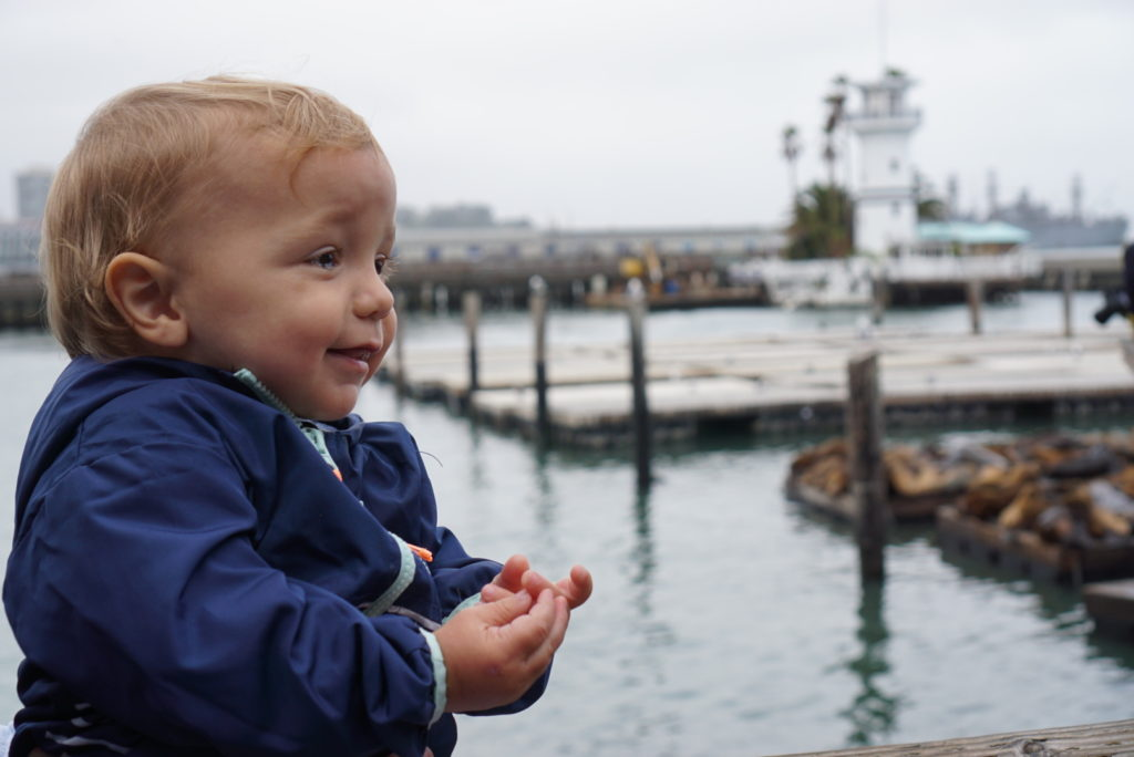 Pier 39 San Fransisco Bay Fisherman's Wharf with Toddler